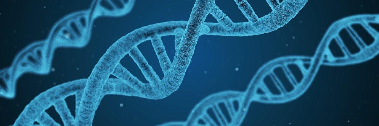 Biyoenformatik ve Genetik 2021 Taban Puanları ve Başarı Sıralamaları