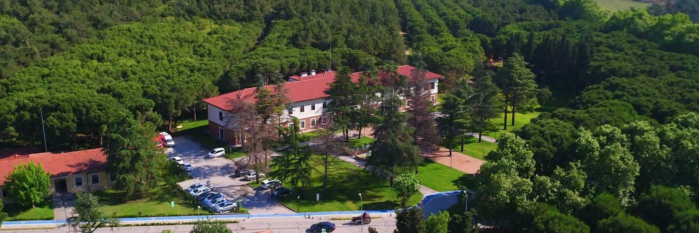 Gebze Teknik Üniversitesi 2021 Taban Puanları ve Başarı Sıralamaları