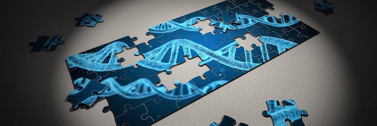 Genetik ve Biyomühendislik 2021 Taban Puanları ve Başarı Sıralamaları