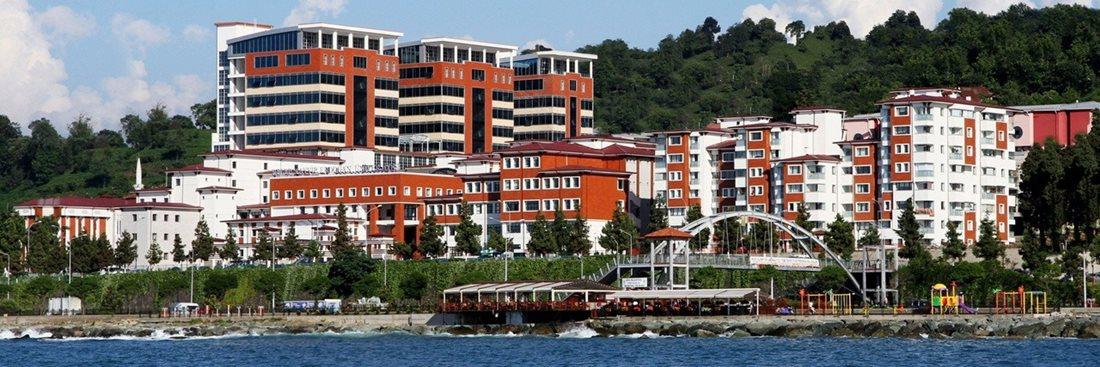 Recep Tayyip Erdoğan Üniversitesi 2021 Taban Puanları ve Başarı Sıralamaları